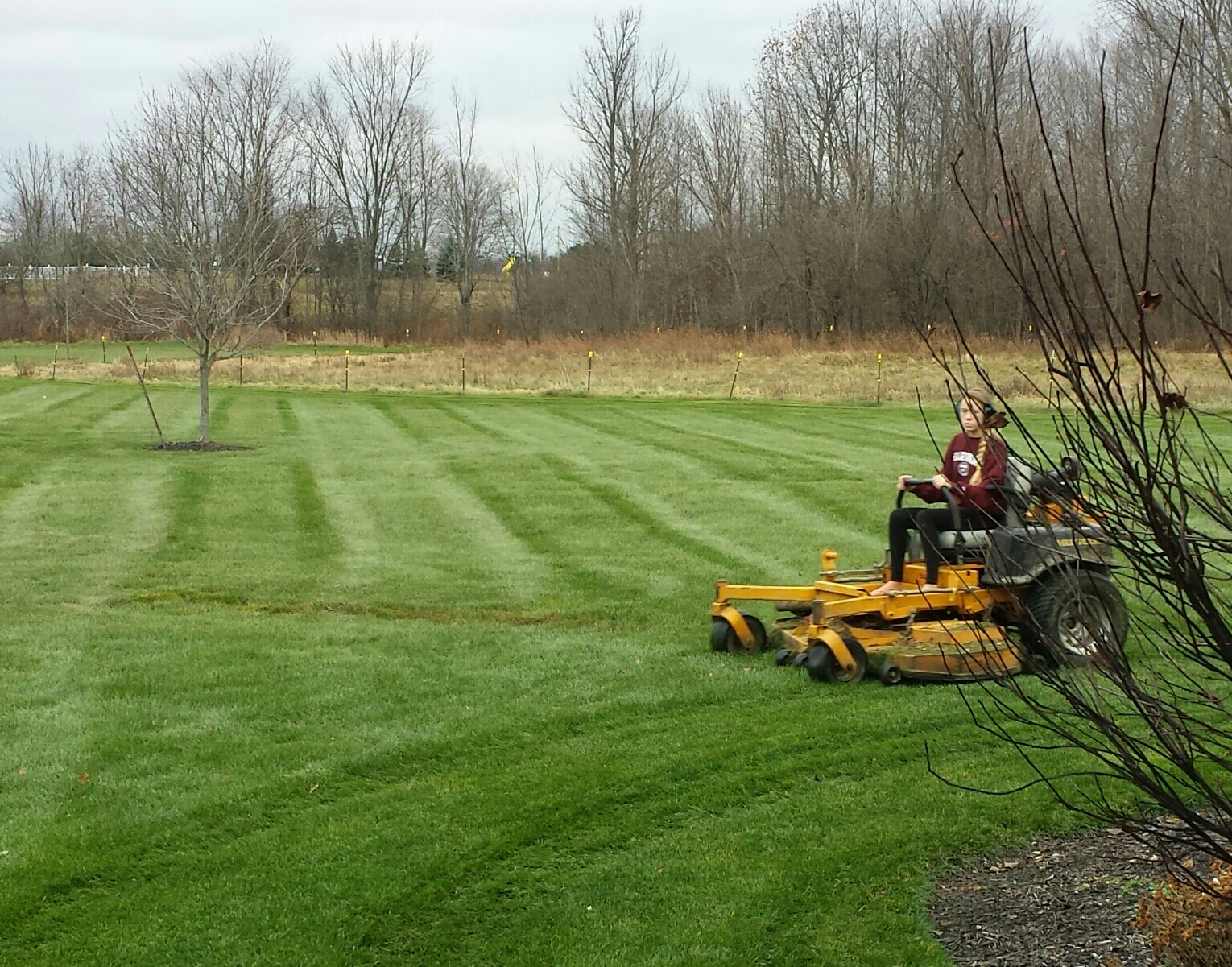 Keep On Mowing And Avoid Snow Mold Brookside Lawn Service