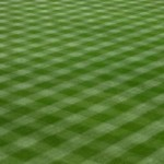 lines_in_grass-300x199